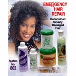 EMERGENCY HAIR REPAIR SYSTEM